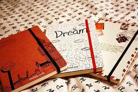 dnevniki
